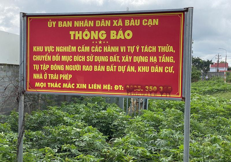 bat-dong-san-ngu-dong-vi-covid-19-co-dat-tung-chieu-tao-sot-dat-de-du-do-khach-hang-4_800x560.jpg