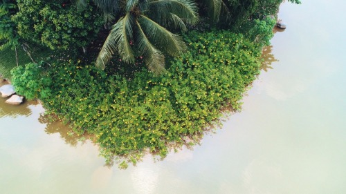 khong gian song xanh tai biet thu dao ecopark grand the island1