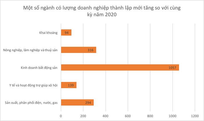 hon-1000-doanh-nghiep-bat-dong-san-thanh-lap-moi-trong-2-thang-dau-nam-3.jpg