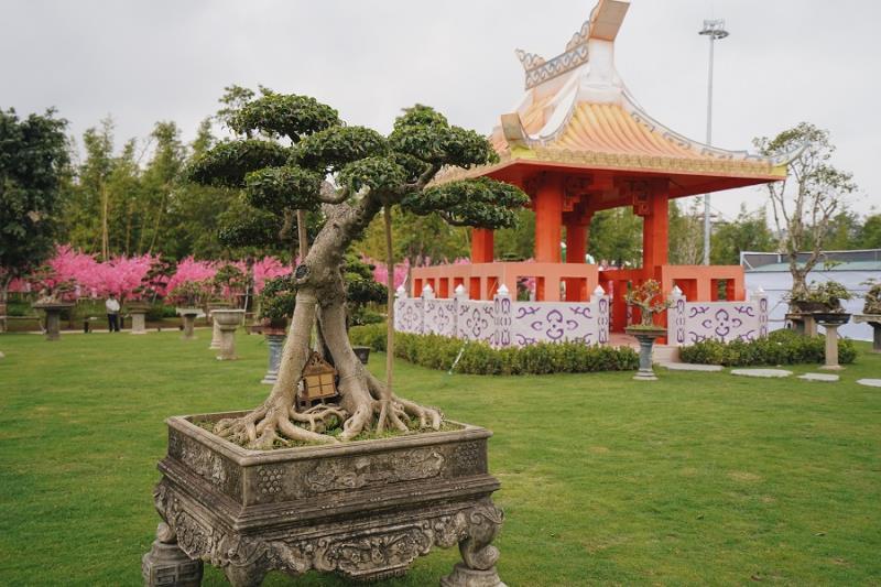le-hoi-hoa-xuan-tai-vinhomes-smart-city-4.png