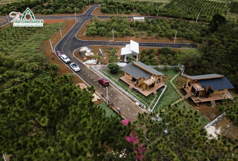 the-tropicana-garden-cuoc-song-thuan-khiet-giua-dai-ngan-2_800x540.jpg